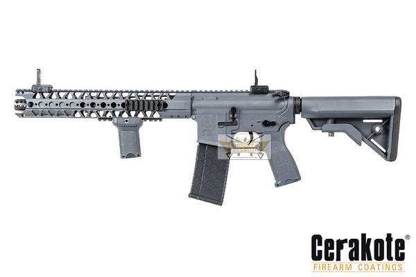 Evolution Dytac LA M4 SBR Wolf Grey lone star